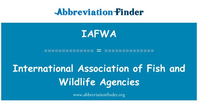 IAFWA: Asociación Internacional de pescado y agencias de vida silvestre