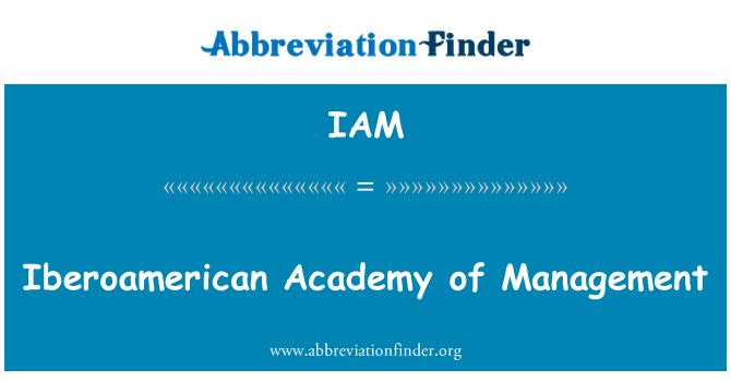 IAM: Iberoamerican Academy of Management