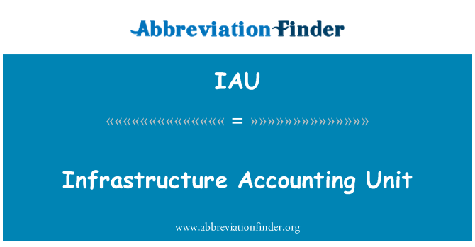 IAU: Infrastructure Accounting Unit