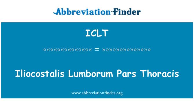 ICLT: Iliocostalis Lumborum Pars Thoracis