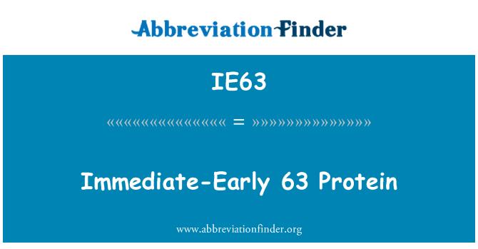 IE63: فوری طور پر-ابتدائی 63 پروٹین