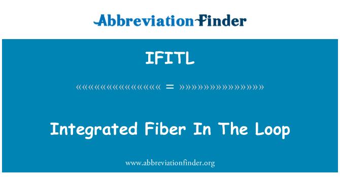 IFITL: Integrated Fiber In The Loop