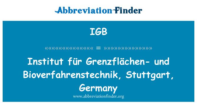 IGB: Institut für Grenzflächen- und Bioverfahrenstechnik, Stuttgart, Germany