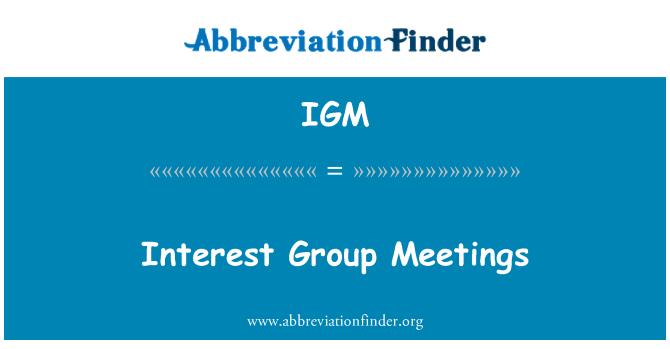 IGM: Interest Group Meetings
