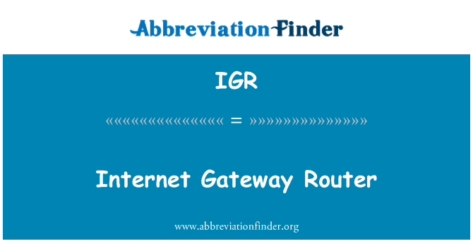 IGR: Internet Gateway Router