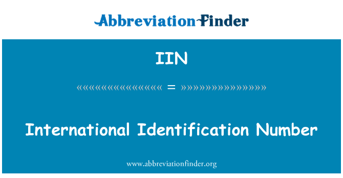 IIN: International Identification Number