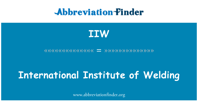 IIW: Uluslararası kaynak Enstitüsü