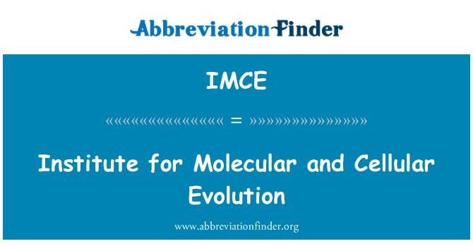 IMCE: Institute for Molecular and Cellular Evolution