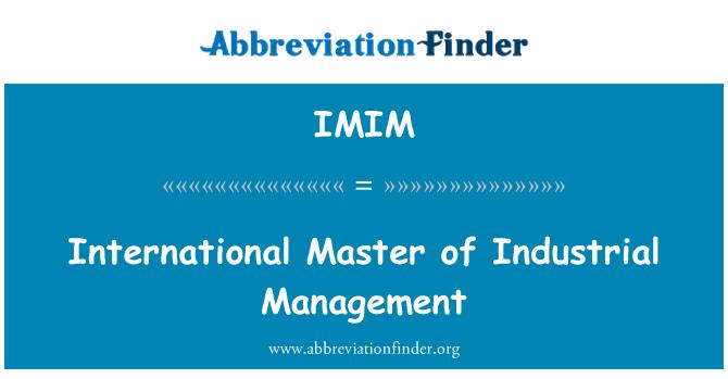 IMIM: Master Internacional en Gestión Industrial