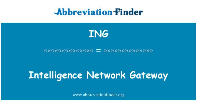 ING: Intelligence Network Gateway