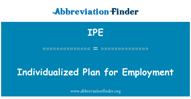 IPE: Individualized Plan for Employment