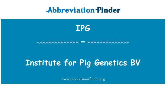 IPG: Institute for Pig Genetics BV