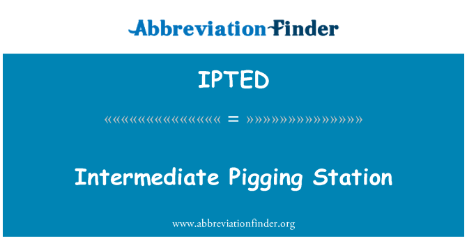 IPTED: Intermediate Pigging Station