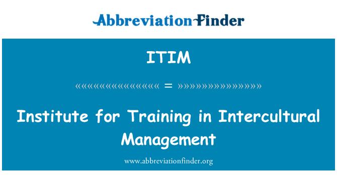 ITIM: Institute for Training in Intercultural Management