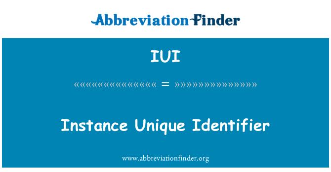 IUI: Instance Unique Identifier
