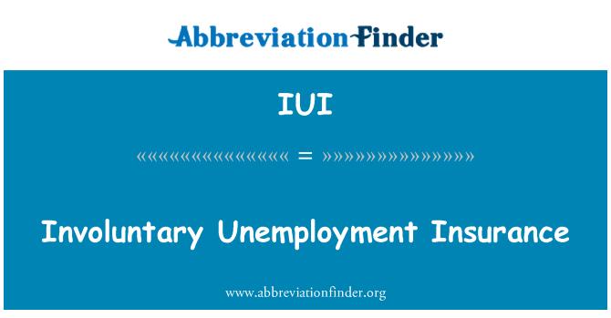 IUI: Involuntary Unemployment Insurance