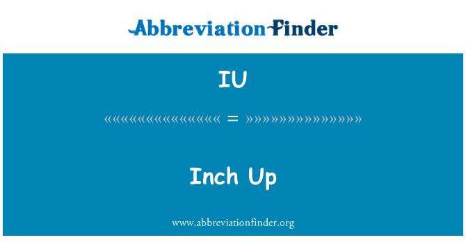 IU: Inch Up
