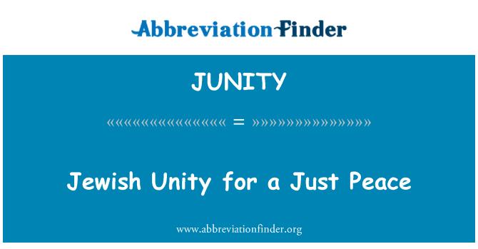 Prefiro A Paz Mais Injusta à Mais Justa: Definição De JUNITY: Unidade Judaica Para Uma Paz Justa