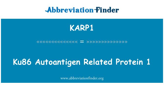 KARP1: Autoantígeno Ku86 proteína 1 relacionada