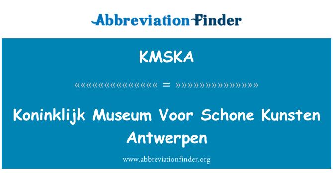 KMSKA: Koninklijk Museum Voor Schone Kunsten Antwerpen