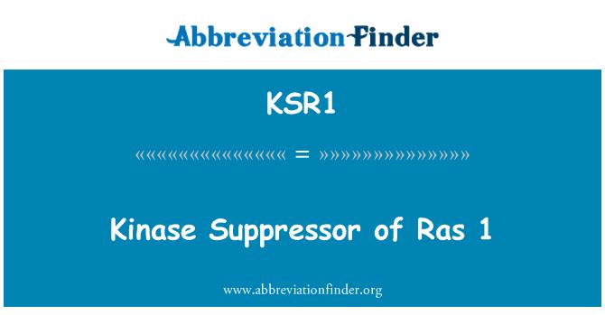 KSR1: Kinase Suppressor of Ras 1