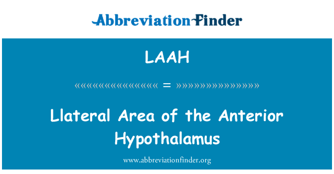 LAAH: Llateral Area of the Anterior Hypothalamus
