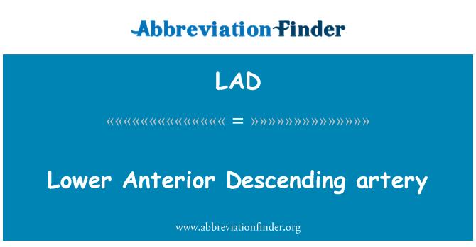 LAD: Lower Anterior Descending artery