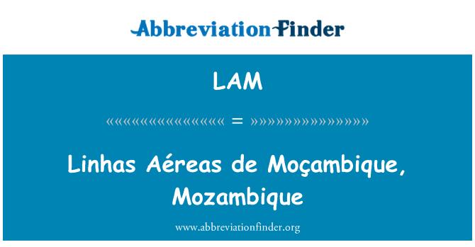 LAM: Linhas Aéreas de Moçambique, Mozambique