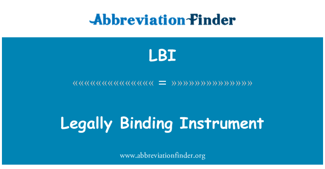 LBI: Legally Binding Instrument