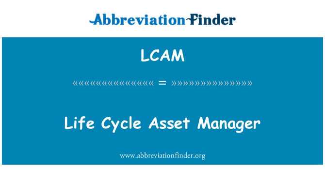 LCAM: Life Cycle Asset Manager