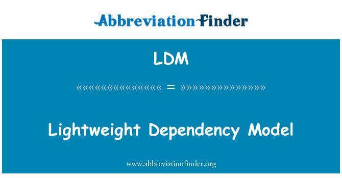 LDM: Lightweight Dependency Model