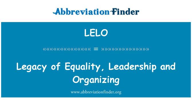 LELO: Eşitlik, liderlik ve organizasyon miras