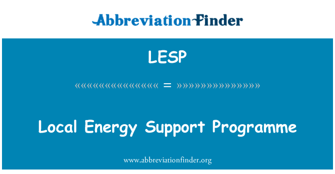 LESP: Local Energy Support Programme