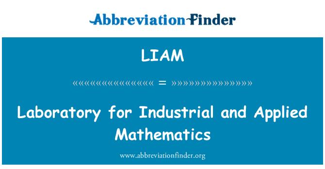 LIAM: Laboratorio para la matemática Industrial y aplicada