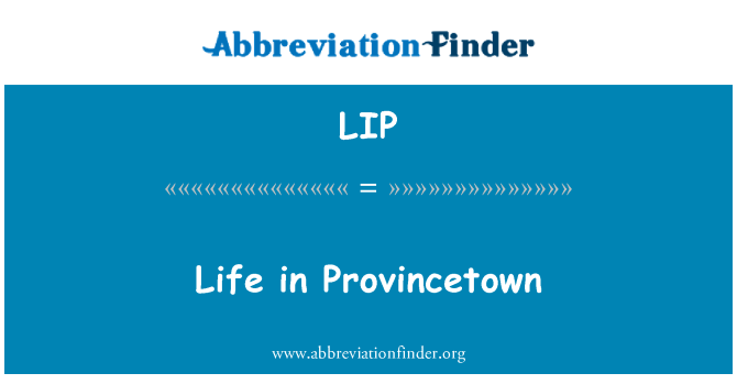 LIP: Life in Provincetown