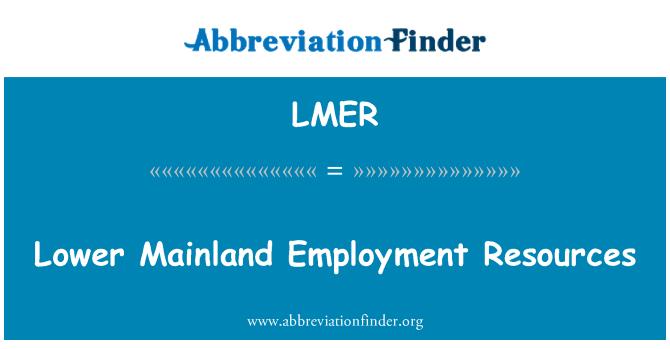 LMER: Recursos de empleo inferiores continental