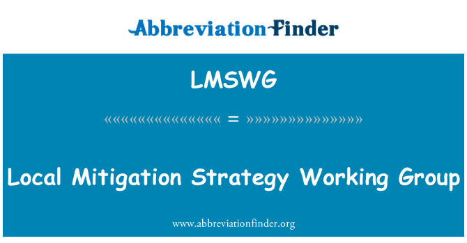 LMSWG: Local Mitigation Strategy Working Group