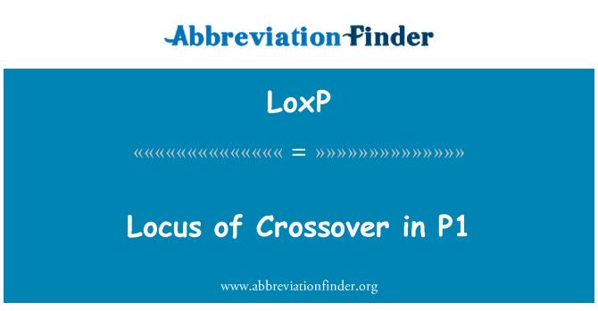 LoxP: Locus crossover u P1