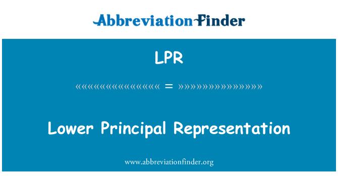 LPR: Lower Principal Representation