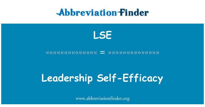 LSE: Leadership Self-Efficacy