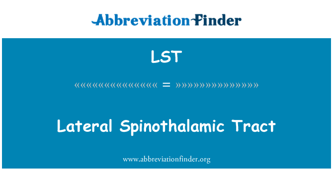 LST: Lateral Spinothalamic Tract