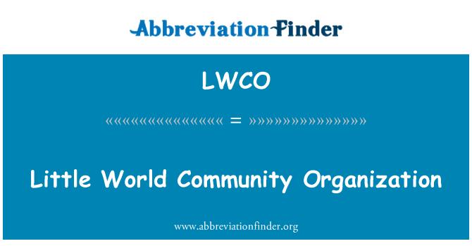 LWCO: 小世界社区组织