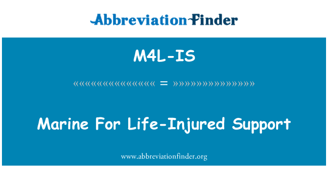 M4L-IS: Marine For Life-Injured Support