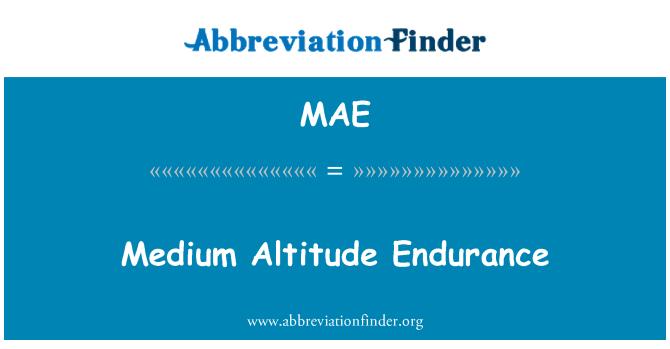 MAE: Medium Altitude Endurance