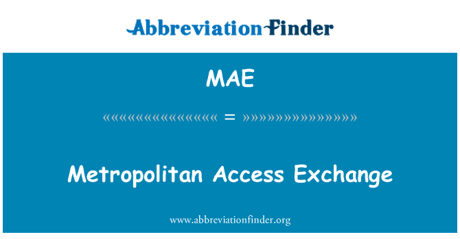 MAE: Metropolitan Access Exchange