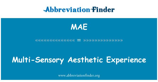 MAE: Multi-Sensory Aesthetic Experience