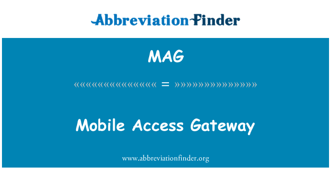 MAG: Mobile Access Gateway