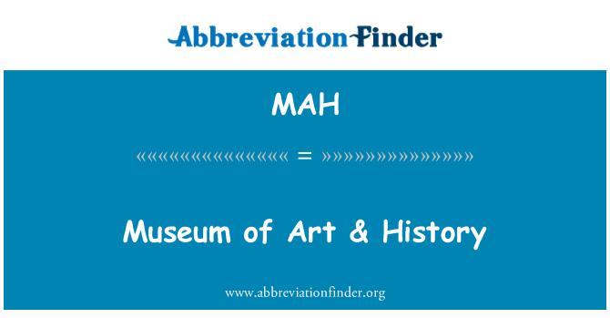 MAH: Museum of Art & History