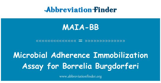 MAIA-BB: Microbial Adherence Immobilization Assay for Borrelia Burgdorferi