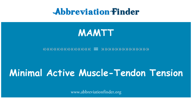 MAMTT: Minimal Active Muscle-Tendon Tension